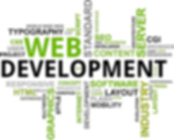 custom software development florida