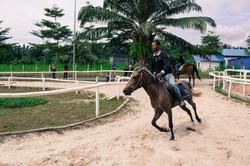 Sinar Eco Resort Horse Riding