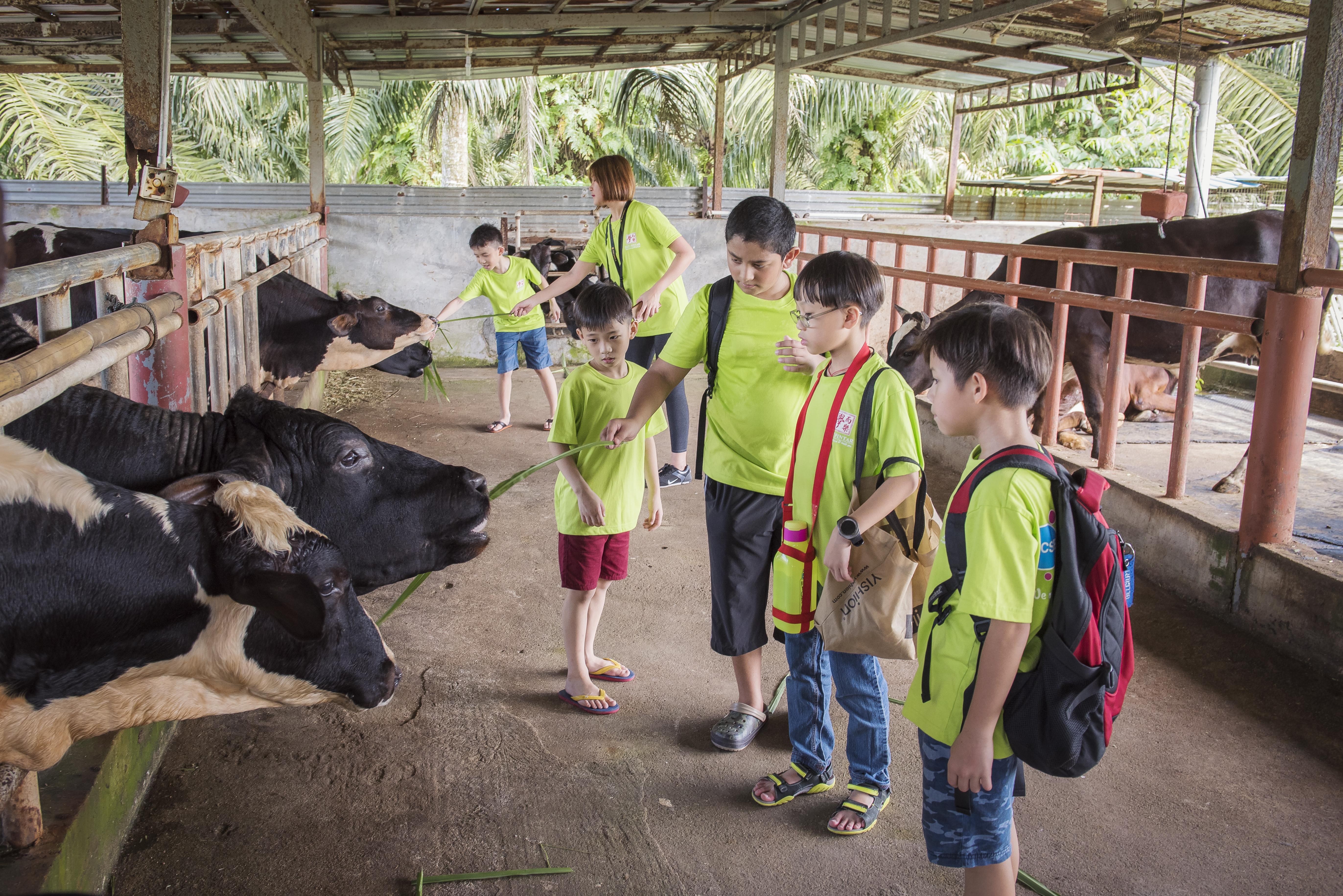 school excursion - animal encounter