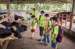 school excursion - animal encounter