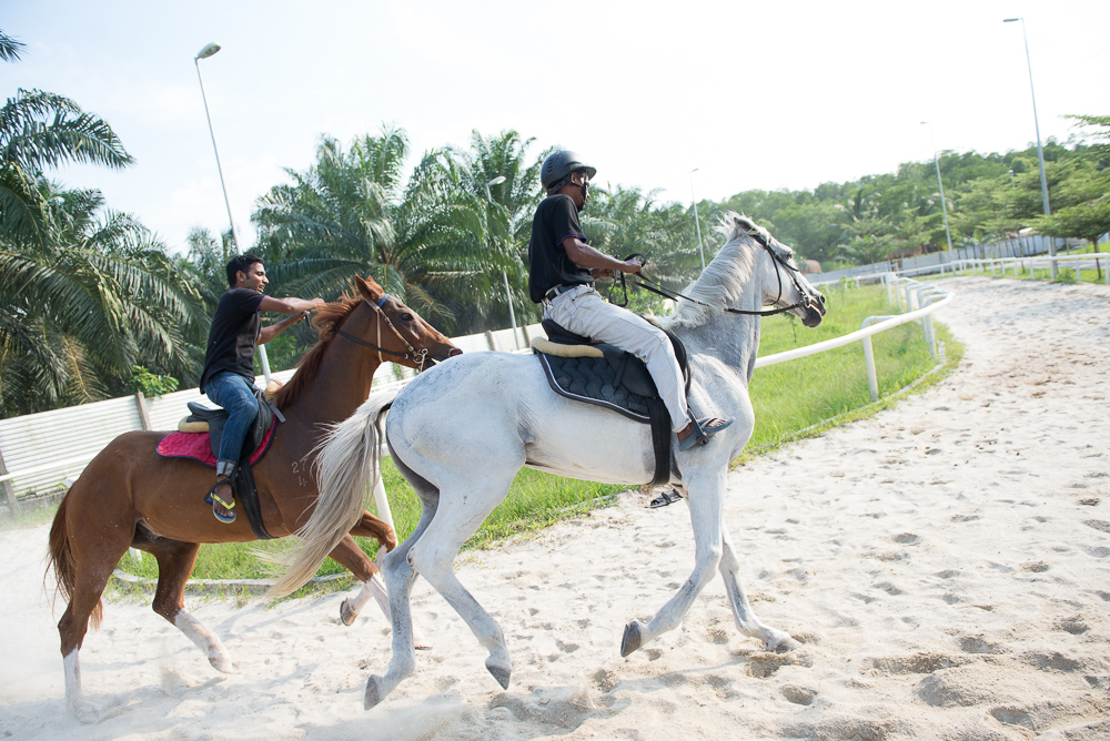 Sinar Eco Resort Horse Riding