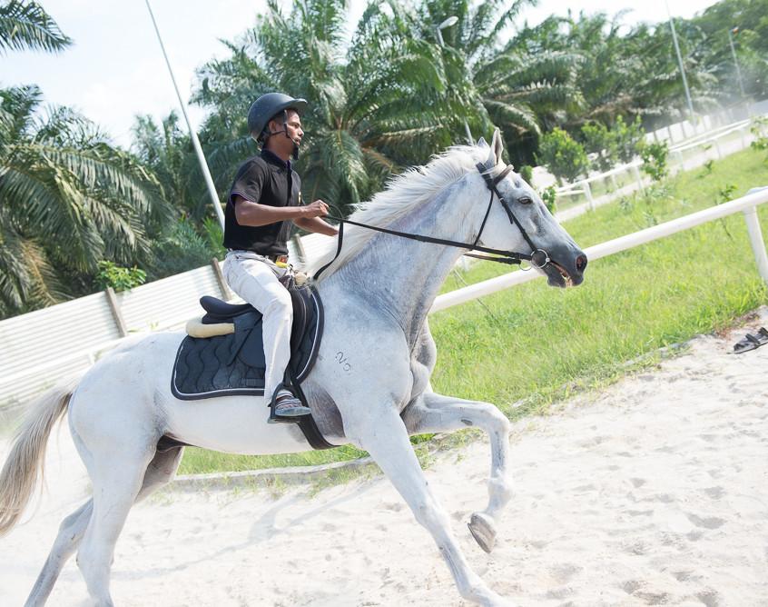 Horse Riding At Sinar Eco Resort
