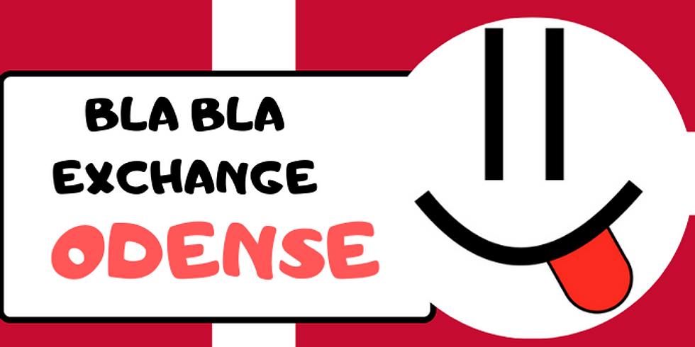 Odense BlaBla Exchange