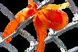 25338867_web1_210531-ALT-RU-Orange-ribbo