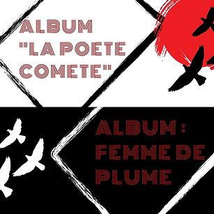 ladybird album pluma (3).jpg