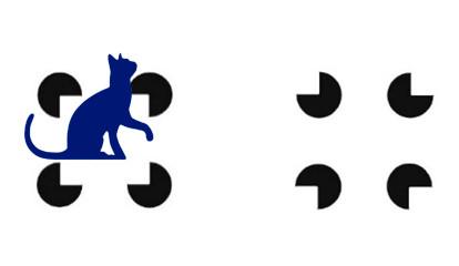 Кошки способны распознавать оптическую иллюзию, выяснили ученые
