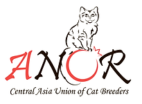 logo_anor.png