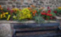 Flowers Corbridge norman longstaff photo