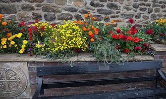 Flowers Corbridge norman longstaff photo