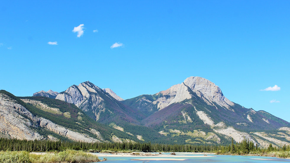 Alberta's Colours