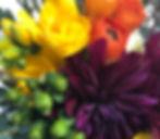 IMG_2905_edited_edited.jpg