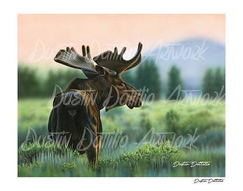 Moose Website print.jpg