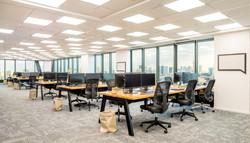 משרד optibus1