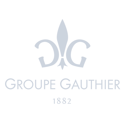Groupe Gauthier 20p.png
