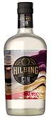 Gin Hilbing.jpg