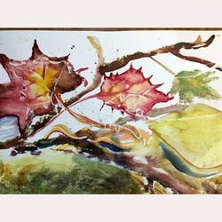Leaves by ......