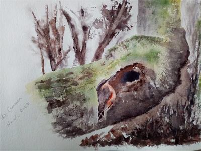 Bird by Ann