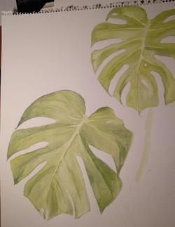 Leaves by Fran