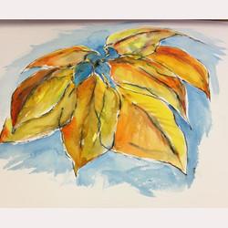 Autumn leaves by Brenda