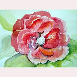 Garden Flower by Nicola