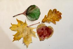 Leaves 2 by Dee
