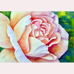 Garden flower by Maureen