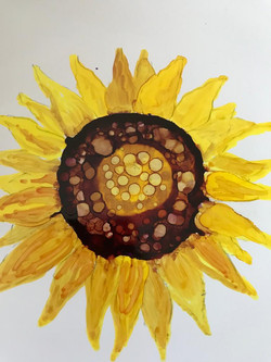 A sunflower by Moyra