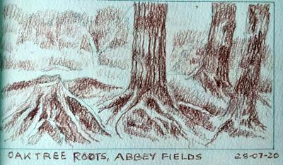 Abbey Fields by Maureen