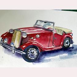 Car by Moyra