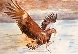 Bird 1 by Dee