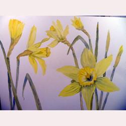 Garden flower 2 by Fran