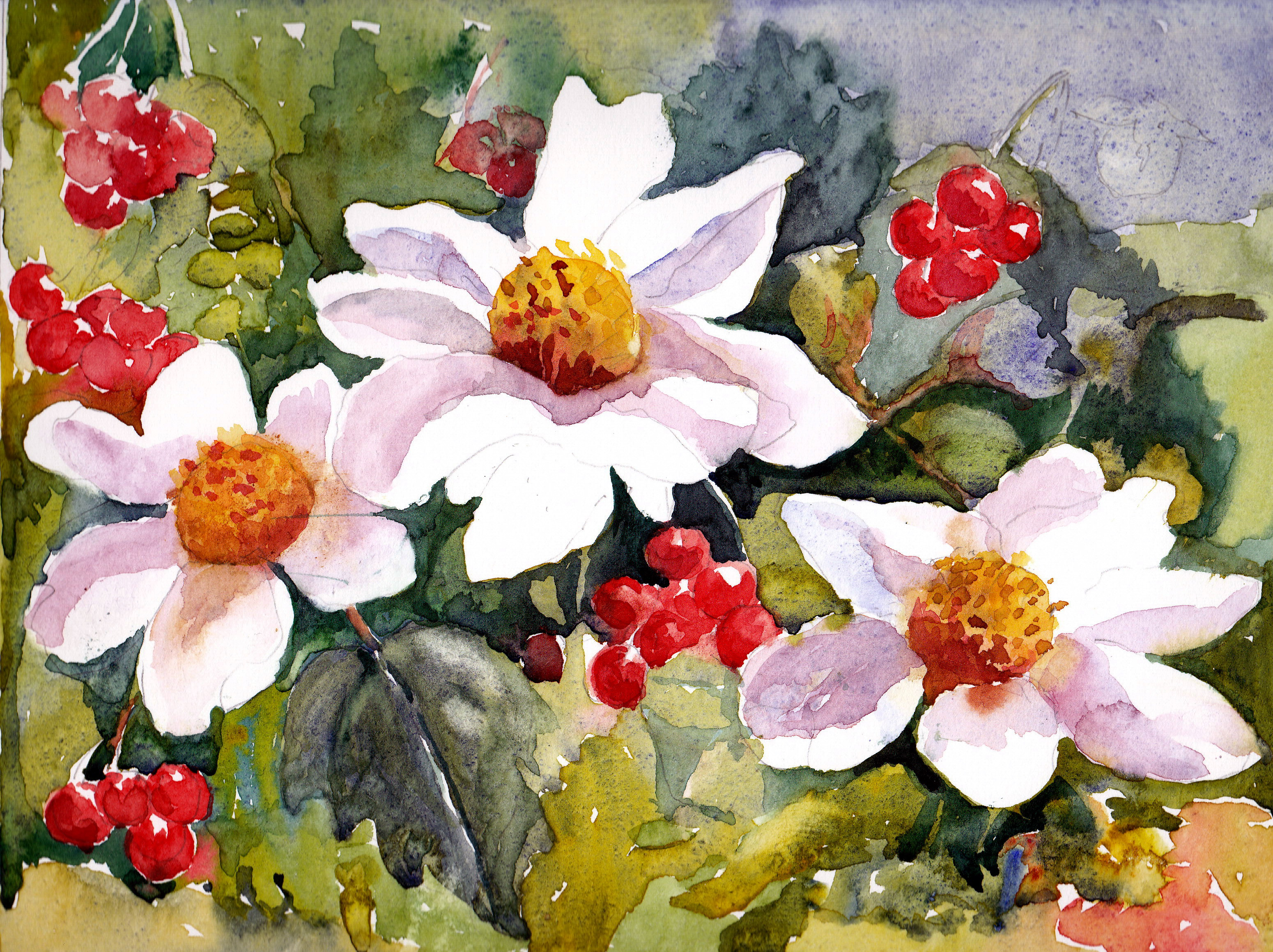 Maureen's CHRISTMAS CARD ROSES
