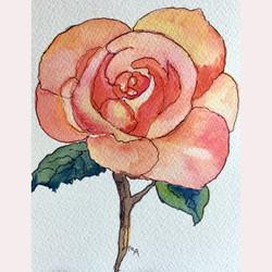 Garden flower 2 by Maureen