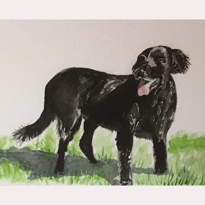 Dog 1 by Dee