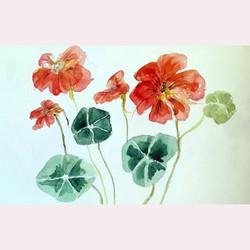 Garden flowers by Dee