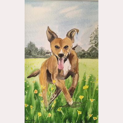 Dog 2 by Dee