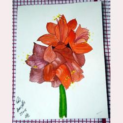 Garden flower by Alan