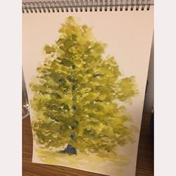 Tree by Brenda