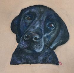 Animal in pastels by Maureen