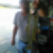 bart fish_edited.jpg