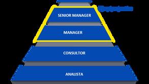 Categorias en consultoría
