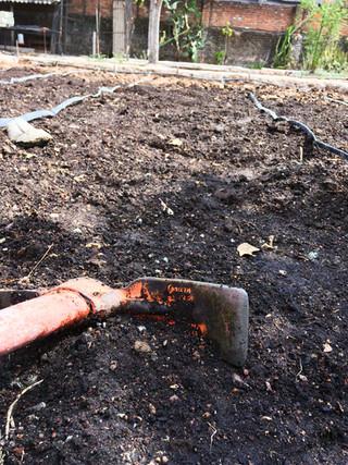 Preparing the land to plant