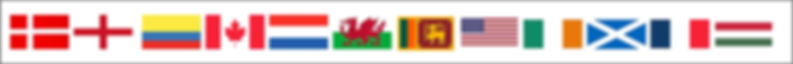 flags banner.jpg