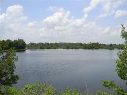 sankey florida villa lake