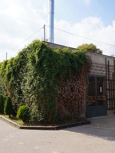 Biomassa Les Cremades. Caldes de Montbui