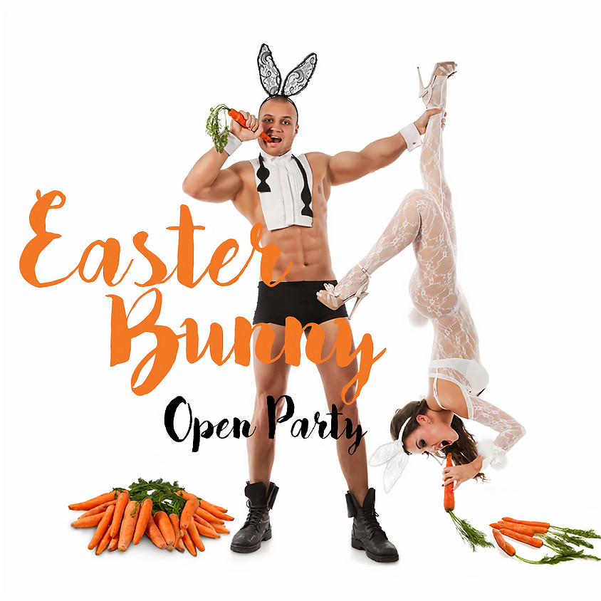 Easter Bunny Open Party