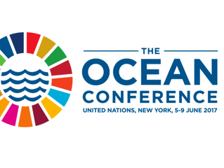UNITED NATIONS in New York hosts OUT OF THE BLUE VR experience as part of the World Ocean CONFERENCE