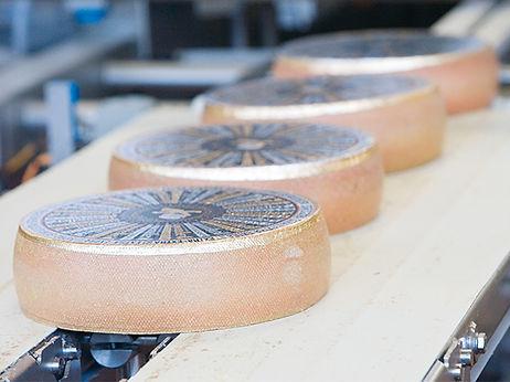Výroba sýrů