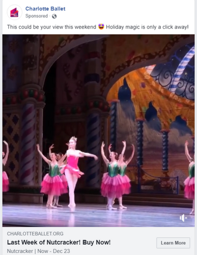 big-flowers from the stage fb.png