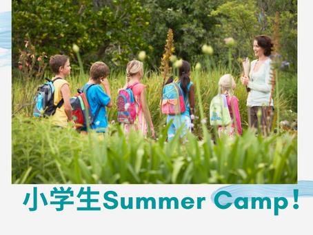 Summer Camp 2021★サマースクール(小学生向け)受付開始!